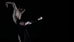 Modern Contemporaneo DanzArte