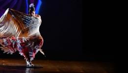 Flamenco DanzArte